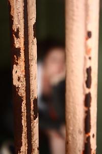 Through the bars