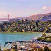 Golden Gate Tiburon