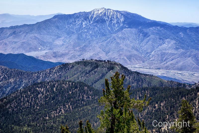 San Jacinto from Gorgonio Peak Trail