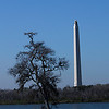 San Jacinto Monument shot from the Cul de Sac along the little bay on the east side.