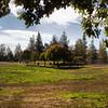 Penitencia Creek Park, San Jose, California