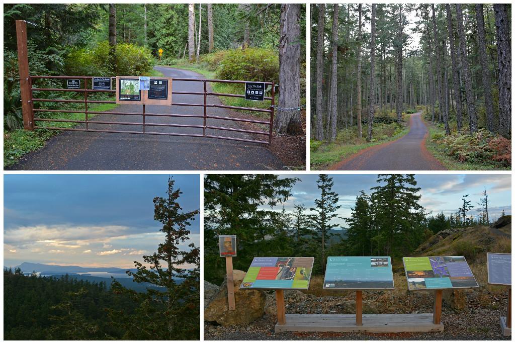 Mt Grant Preserve