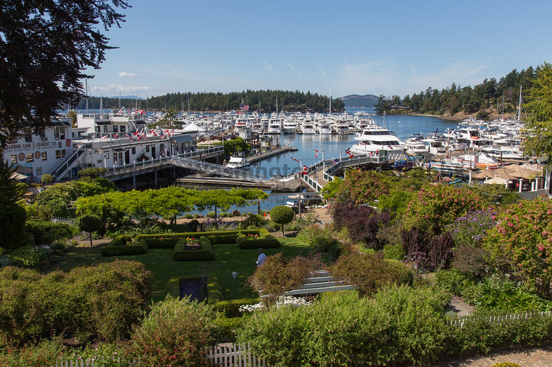 Roche Harbor 18