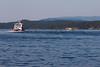 Friday Harbor 30