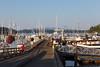 Friday Harbor 39