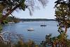 Orcas Island 16