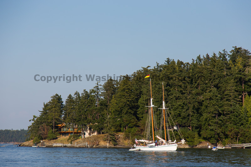 Friday Harbor 14
