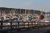 Friday Harbor 40