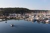 Friday Harbor 36