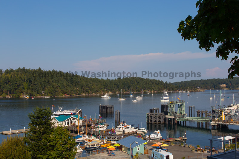 Friday Harbor 13