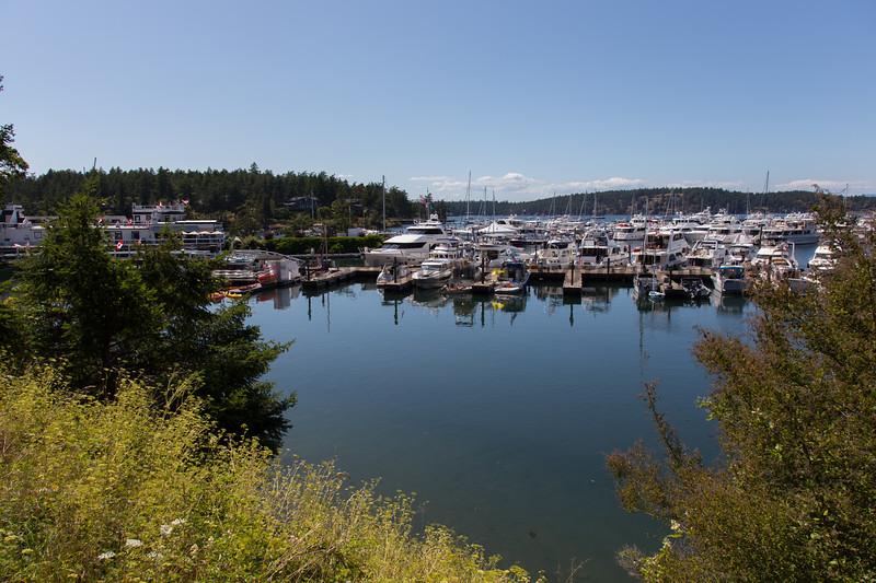 Roche Harbor 15