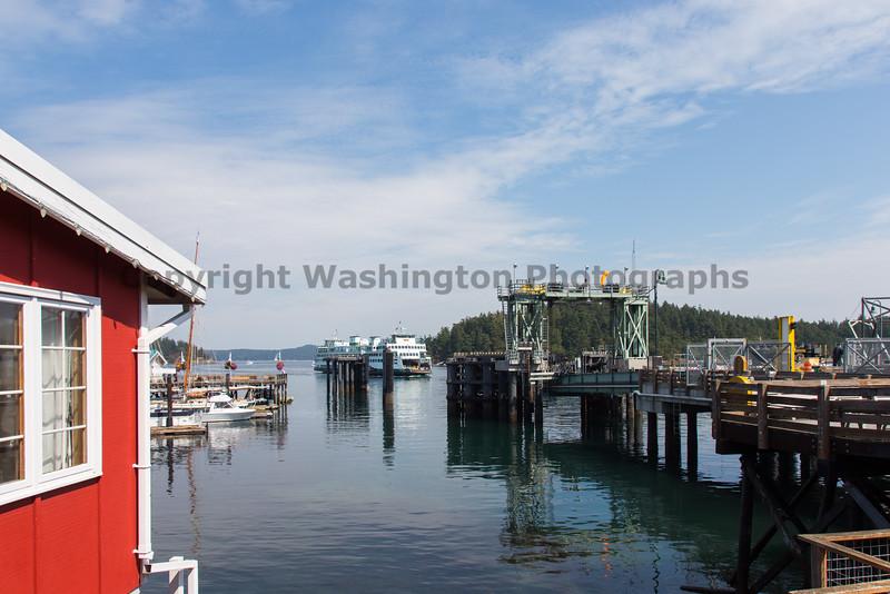 Friday Harbor 66