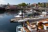 Friday Harbor 54