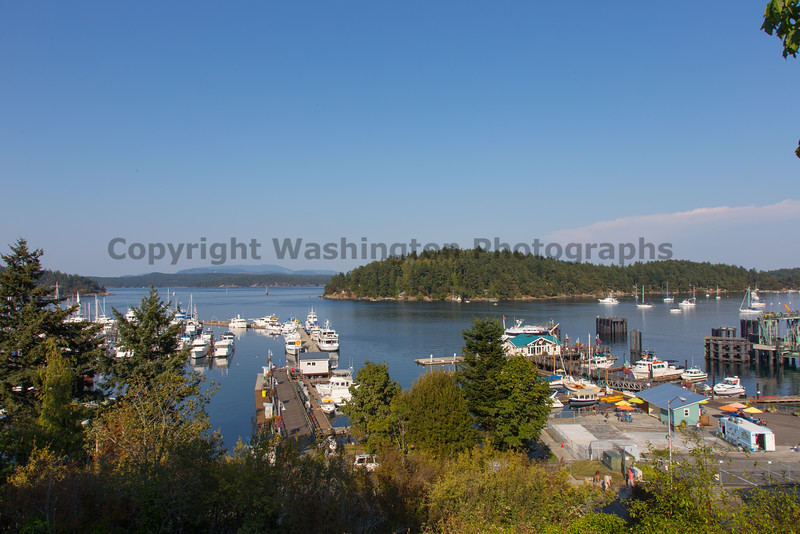 Friday Harbor 12