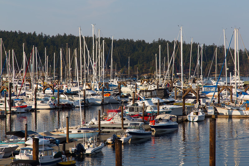 Friday Harbor 35