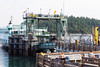 Friday Harbor 45