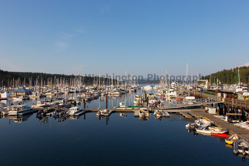Friday Harbor 33