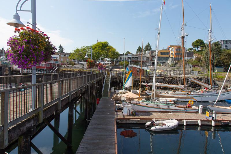 Friday Harbor 55