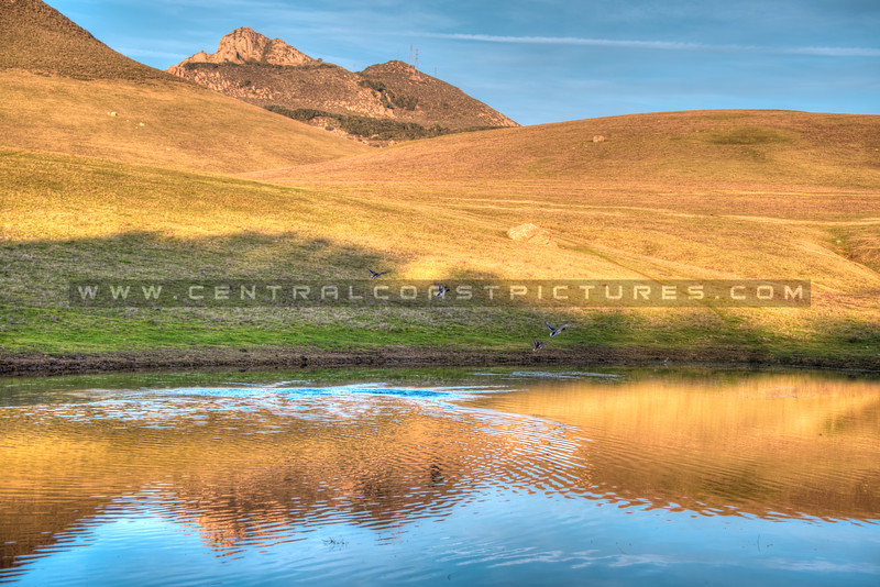 turri road lake 8104-