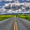 slo turri road bikes_5869