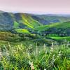 north county green hills_4521