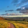 islay hill slo 9345-