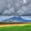 edna valley_6327