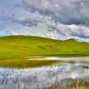SLO turri road duck pond 5200