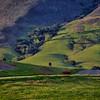 edna valley 6649