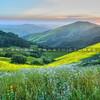 north county green hills_4526