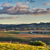 islay hill slo 9346-