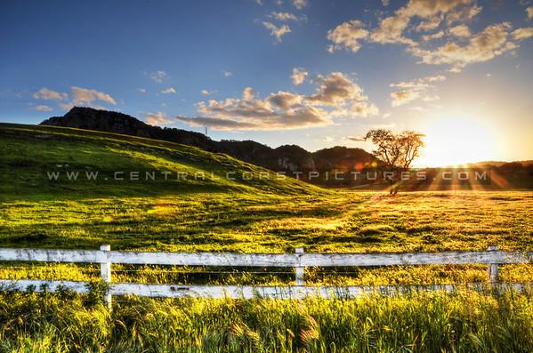 edna-valley_6580