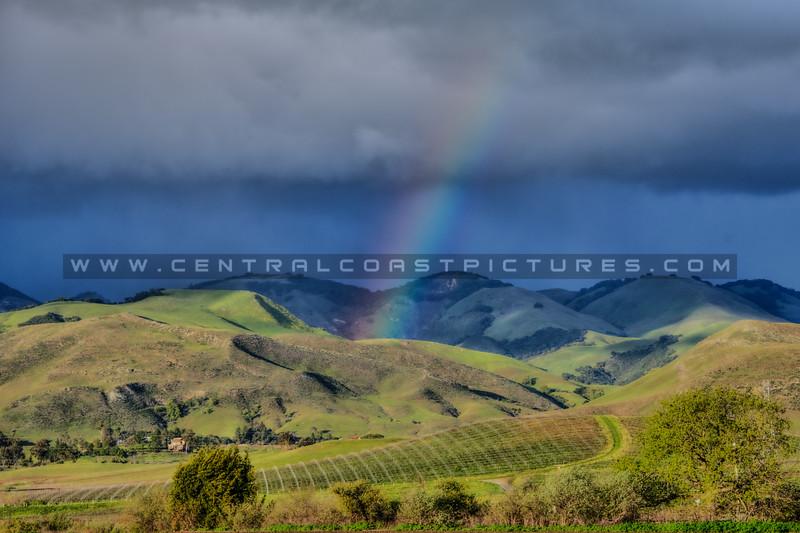 edna valley rainbow 6553