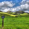 turri road sign_5824