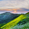 north county green hills_4550