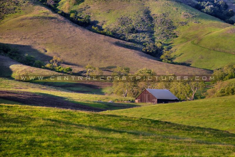 edna valley barn 6652