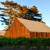 edna-valley-slo-barn_3312