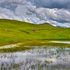 SLO turri road duck pond 5193