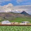slo farm 3518