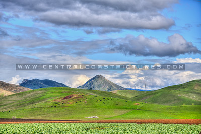 slo green hills 3521