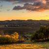 islay hill edna valley 9404-