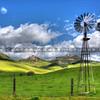 turri road windmill_5829