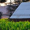 edna-valley-barn-3616