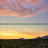 edna-valley-sunset-slo_5066