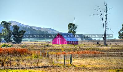 maddona-pink-barn_SLO-6068