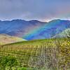 slo edna valley 6476