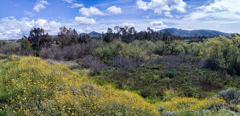 San Marcos Nature