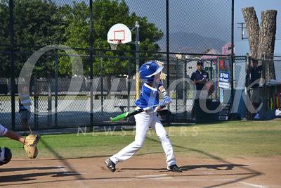 DSC_ San Marino's Hunter Piccinni takes a swing 0010