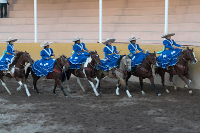 The troupe rides side saddle together