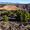 View toward the Wasatch, Mussentuchit Badlands